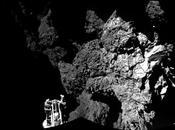 Rosetta tiempos cólera