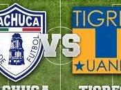 Previa Pachuca Tigres liguilla apertura 2014