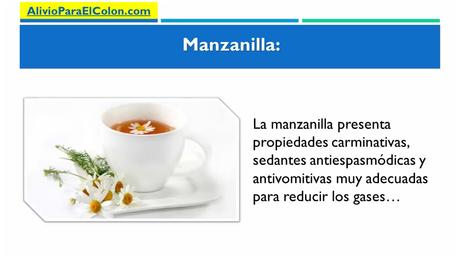 5 Remedios Naturales para la Colitis