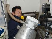 Convierten caca combustible para cohetes