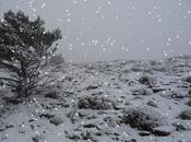 Penyagolosa 2014, nevada inesperada.