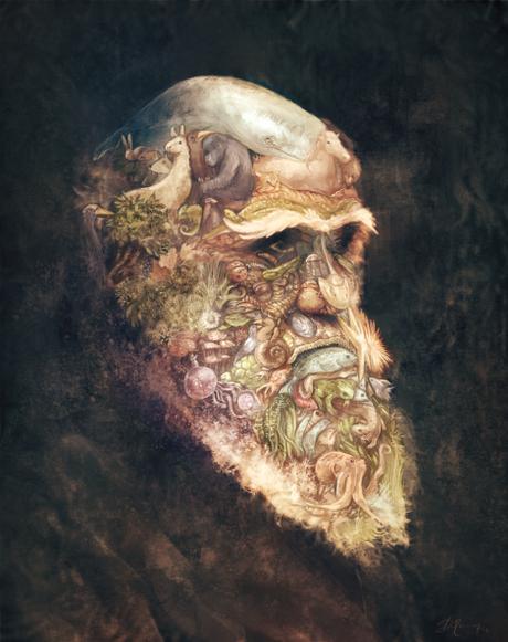 10 malentendidos sobre Evolución