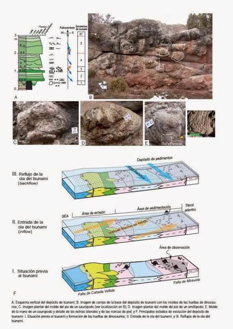 Un tsunami hace 128 millones de años fosilizó cientos de pisadas de dinosaurios