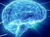 Enfermedad Huntington: Progressivo Neurodegenerativo trastorno genético