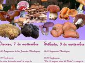 Xiii jornadas micológicas sigüenza