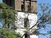 Recorriendo isla Tenerife: Icod Vinos