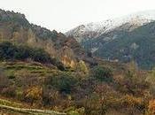 Andorra vinos