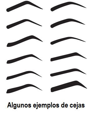 Plantillas para cejas tiles y f ciles de usar paperblog for Cejas para cara cuadrada