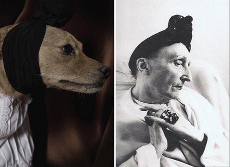 Innegable parecido entre Edith Sitwell y el perrito