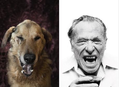 Charles Bukowski y el perro con el que guarda similitud