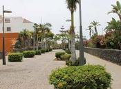 Recorriendo isla Tenerife: Puerto Cruz