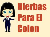 Colon Irritable? Hierbas Plantas Medicinales Rescate