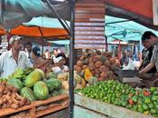 Variadas ofertas mejores precios Feria Agropecuaria Habana