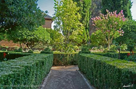 La alhambra de granada jardines el partal paperblog for Jardines nazaries