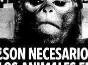 experimentos científicos animales