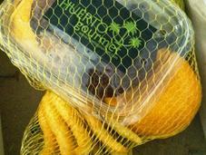 Almejas emulsión algas cítricos
