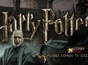 días Sideshow. Siete. Star Harry Potter figures.