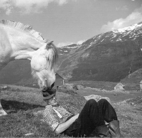 Olav H. Hauge: 2 poemas: