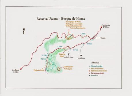 Reserva Utana (Bosque de Hanne), otra joya de la biodiversidad del sur