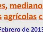 Investigación: eficiencia económica grandes, medianos pequeños productores agrícolas colombianos Forero