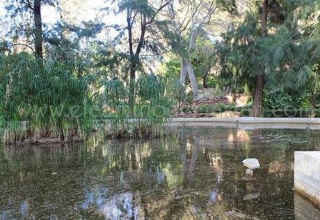 Rincones de valencia los jardines de monforte paperblog for Jardines de monforte valencia