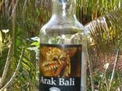 Arrack Arak, Indonesia