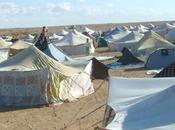 Protestas saharauis ciudades ocupadas
