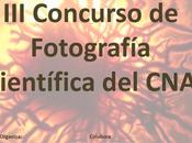 Concurso Fotografía Científica