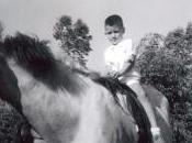 caballo belleza desnudo, nació desnudo. la...