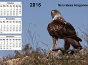 Calendario 2015 Cuarto trimestre