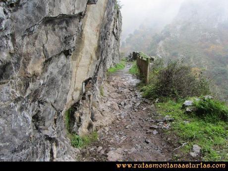 Ruta Xanas, Valdolayés, Peña Rey: Puente de madera en la ruta de las xanas