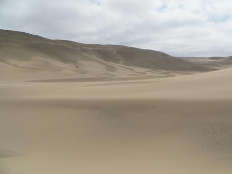 Reserva de San Fernando, Un Eden Poco Conocido
