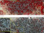 Nigeria denuncia pasividad países occidentales ante Boko Haram