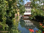 Colmar, Eguisheim Riquewihr, tres pueblos franceses rebonitos parecen alemanes