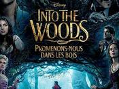 Into Woods