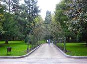 Campo Francisco Oviedo