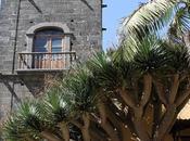 Recorriendo isla Tenerife: Cristóbal Laguna