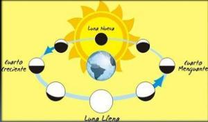 Fases De La Luna Paperblog