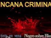 Ideas para participar yincana criminal