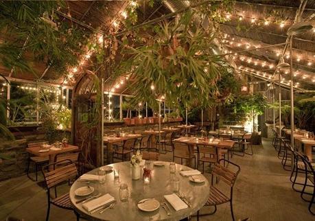 Diariodeco11 decorar con plantas sorteo paperblog - Decoracion de restaurantes rusticos ...