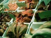 Tema Materias primas. Carnes: Despojos