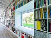 biblioteca soñada