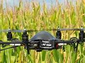 Beneficio drones campo agropecuario