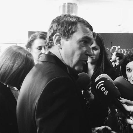 Los_Goya_2015-Alfombra_Lodi-Antonio_Banderas-