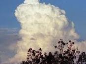 Meteorólogos: ¿porque