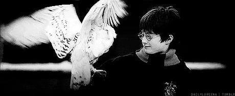 Del libro a película: Harry Potter y la piedra filosofal
