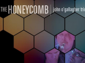 John O'Gallagher Honeycomb