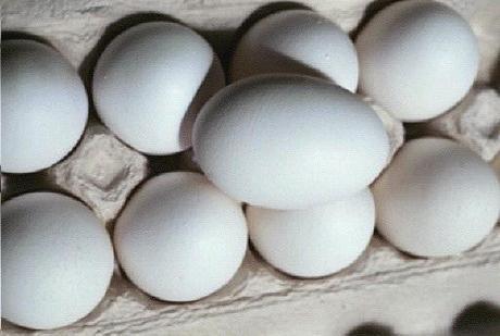 Descubren cómo 'deshervir' huevos y recuperar sus propiedades iniciales