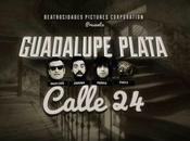 Guadalupe Plata, clip tour 2015
