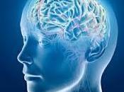 Siete malos hábitos perjudican cerebro